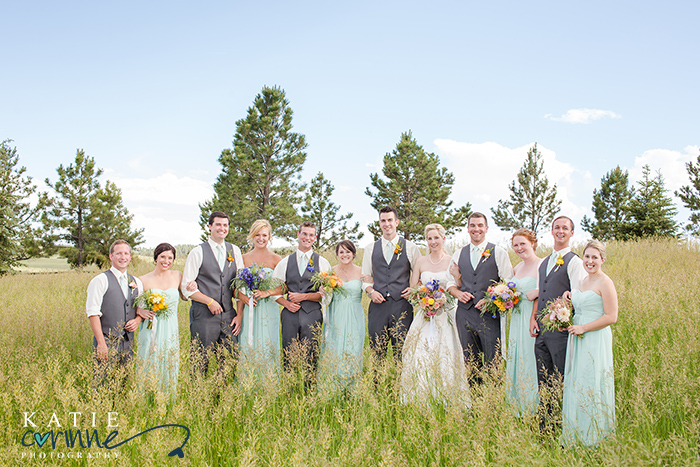 bridal party portraits, wedding party photos, wedding party poses, huge wedding party pose,